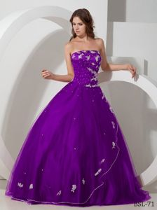 Purple Strapless Appliques Decorate Beading Dress for Quince