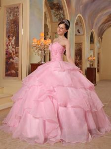 New Arrival Pink Floor-length Organza Dress for Quince