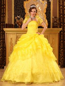 Yellow Floor-length Organza Appliques Dress for Quinceaneras