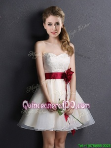 Charming Sweetheart Sleeveless Dama Dress Mini Length Lace and Hand Made Flower Champagne Organza