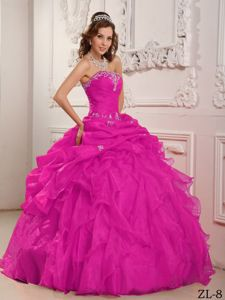 Hot Pink Ball Gown Ruffles and Pick ups Quinceanera Gowns Plus