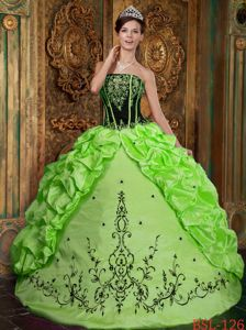 Strapless Spring Green Embroidery Pick-ups Quinceanera Gowns