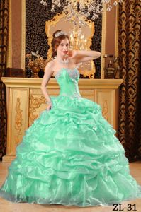 Sweetheart Apple Green Appliques and Pick-ups Dress for Quince