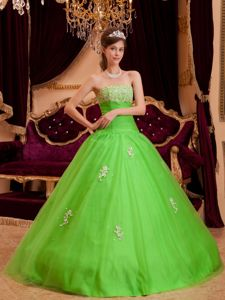 Spring Green A-line Strapless Quinceanera Dresses with Appliques