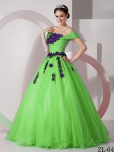 Floral Embellishment Organza Sweet Sixteen Dress in Spring Green