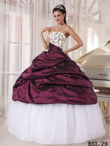 Taffeta and Tulle Pick-ups Sweet 15 Dresses with Embroidery 2014