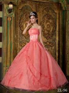Vintage-inspired Ball Gown Appliques Sweet 15 Dress in Organza