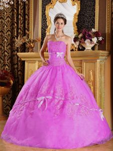 Romantic Strapless Appliques Sweet Sixteen Dresses with Bowknot