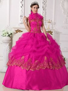 Berlin Film Festival 2013 Hot Pink High Neck Ball Gown Pick-ups Beading Quinceanera Gowns