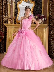 Lovely Pink One Shoulder Quinceanera Gown Dress with Appliques