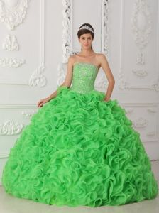 Gorgeous Sequins Green Dresses Quinceanera with Rolling Flowers