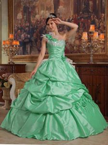 Apple Green one Floral Shoulder Ruches and Pick-ups Quince Dress