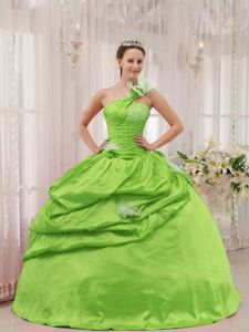 Spring Green one Shoulder Beading Ruched Bust Dress for Quince