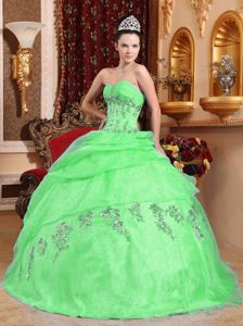 Cute Apple Green Sweetheart Appliques Tiered Dresses for a Quince