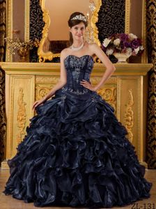 2014 Miss Universe Exquisite Navy Blue Ball Gown Appliqued Dress for Sweet 16