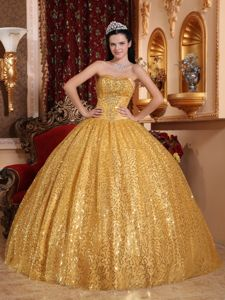 Shimmery Exquisite Ball Gown Sequins Gold Quinceanera Dress