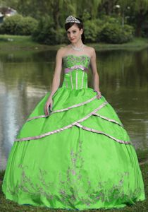 Cheap Spring Green Dress for Sweet 16 with Embroidery Online