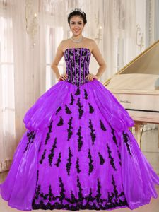 Strapless Appliqued Purple and Black Quinces Dresses for Rent
