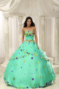 Low Price Apple Green Sweet 16 Dresses with Colorful Flowers