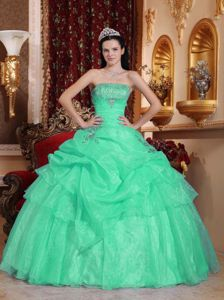 Elegant Apple Blue Ball Gown Pick-ups Appliques Sweet 15 Dresses