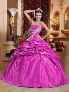 Hot Pink Strapless Taffeta Pick-ups Appliques Quinceanera Gowns