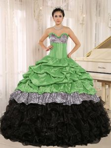 Multi-color Sweet Sixteen Quinceanera Dresses with Zebra Print