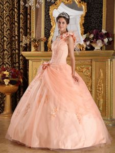 One Shoulder Ball Gown Flower Length Tulle Quinceanera Dresses