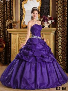 Purple Sweetheart Dress for Quinceanera with Pick-ups On Sale