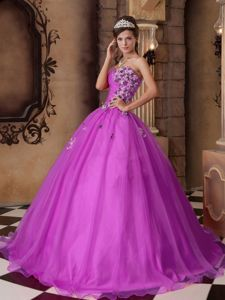 Impressive Fuchsia Organza Dresses For a Quince with Aqqliques