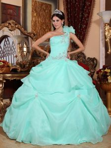 One Shoulder Sweet Sixteen Dresses with Appliques in Organza