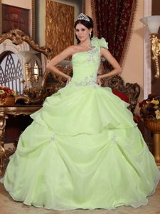 Yellow Green One Shoulder Appliques Sweet 16 Dresses