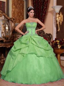 Exquisite Organza Strapless Beaded Green Quinceaneras Dress