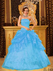 2013 Aqua Blue Strapless Quinceanera Dress by Organza with Appliques