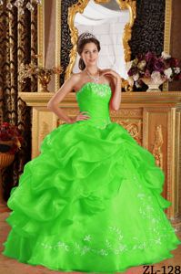 Spring Green Strapless Quinceanera Gown dress by Organza with Pick-ups
