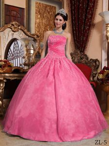 Strapless Sweet Sixteen Dresses by Organza with Appliques