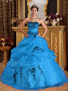 Blue Pick-ups Dresses for a Quinceanera with Black Embroidery