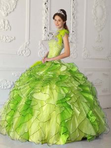 Custom Made Ruffled Yellow Green Feather Quinceanera Dresses