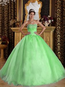 Spring Green Ball Gown Beaded Sweet 15 Dress Colors to Choose