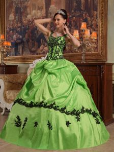 Spring Green Quinceanera Party Dress with Pick-ups Appliques