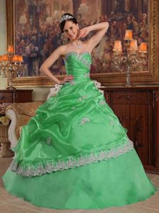 Ball Gown Sweetheart Pick Ups Appliqued Quinceanera Dress