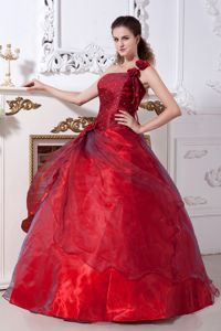 Chic Wine Red One Shoulder Taffeta and Organza Dresses Quince