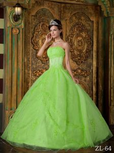 Spring Green Strapless Bodice Embroidery Quinceanera Gown