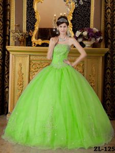 Cute Spring Green Strapless Organza Beading Sweet 16 Dresses