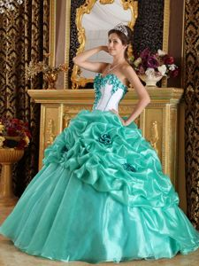 Sweetheart Organza Dress for Quinceaneras with Pick-ups and Flowers