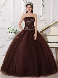Brown Floor-length Ball Gown Tulle Dresses for Quinceanera