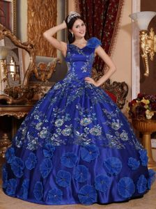 2014 Royal Family Blue Ball Gown V-neck Dress for Quinceaneras with Appliques