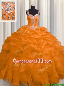 Enchanting See Through Zipper Up Spring and Summer and Fall and Winter Organza Sleeveless Floor Length Quinceanera Gowns andAppliques and Ruffles