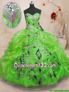 Hot Sale Spring and Summer and Fall and Winter Organza Sleeveless Floor Length Quinceanera Dresses andBeading and Appliques and Ruffles