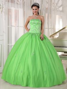 Spring Green Strapless Sweet Sixteen Dresses with Appliques Plus