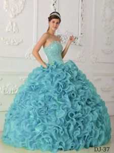 Organza Ball Gown Dresses 15 with Beading and Rolling Flowers